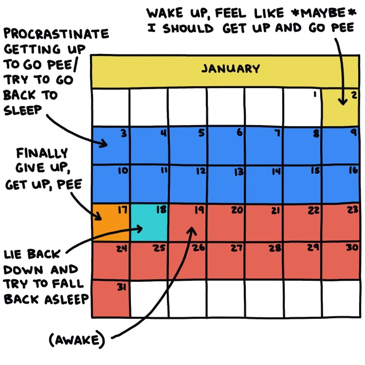 semi-rad calendar: If I were a hibernating bear, January