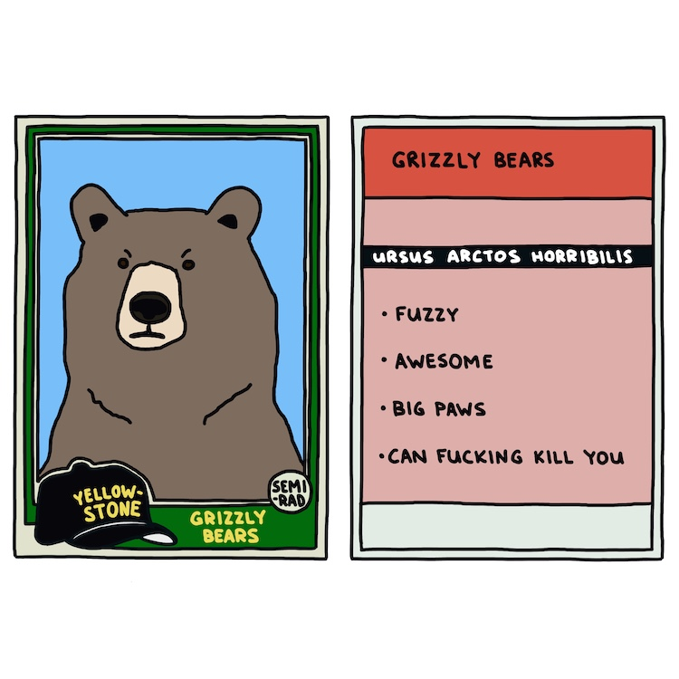 hand-drawn yellowstone trading card: grizzly bears