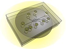 """This illustration shows the design of a new chip capable of simulating a tumor's """"microenvironment"""" to test the effectiveness of nanoparticles and drugs that target cancer. The new system, called a tumor-microenvironment-on-chip device, will allow researchers to study the complex environment surrounding tumors and the barriers that prevent the targeted delivery of therapeutic agents.  (Source: Purdue University)"""
