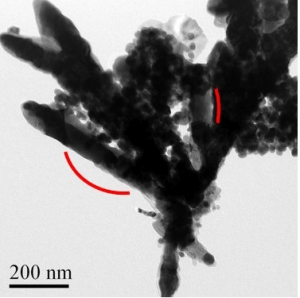 A TEM image of a synthesized CoFe2C rods. (Source: VCU)