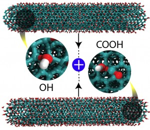 Researchers led by materials scientists at Rice University discovered that altering carbon nanotubes with carboxyl (COOH) and hydroxyl (OH) groups and grinding them together produces nanoribbons. The find could lead to novel nanostructured products with specific properties. (Source: Mohamad Kabbani/Rice University)