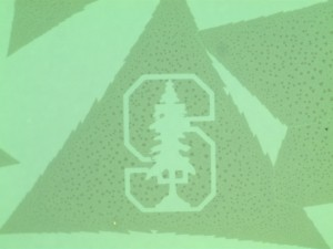 The researchers etched a nanoscale image of the Stanford tree onto an ultrathin chip, using the same technique that could one day create electronic circuits. (Source: Associate Professor Eric Pop's Lab, Stanford University)