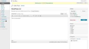 WordPress 3.2 Mensagem Tela