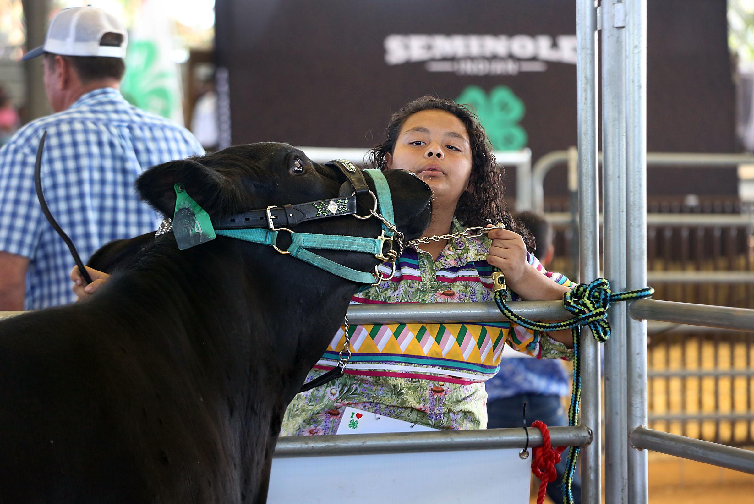 Seminole Indian 4 H Show Displays Kids Determination