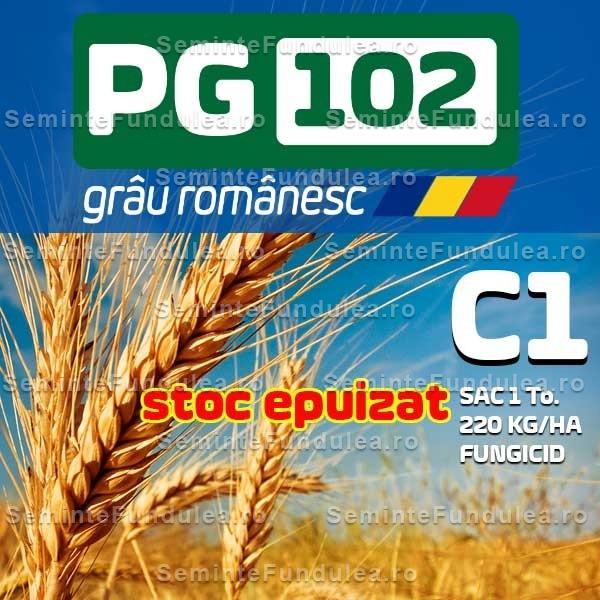 grau pg 102 c1 stoc