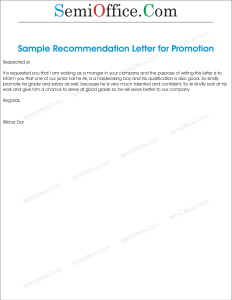 Promotion Recommendations Letter for Junior