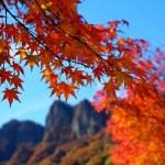 妙義山で紅葉狩り!見頃の時期とアクセス