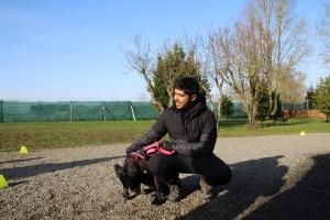 semper-dogz educateur canin