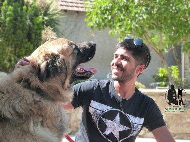 Semper-Dogz-educateur-canin-nantes-cholet---on-se-comprends