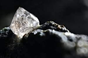 Semporo diamante