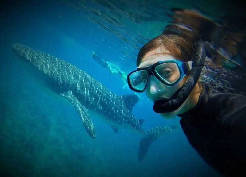 Immersioni e snorkelling alle Maldive