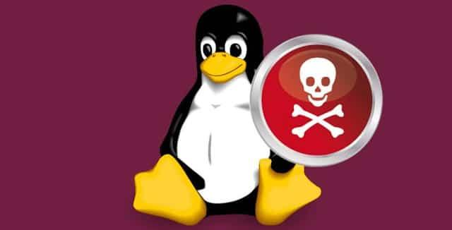 Novo malware deseja adicionar seus servidores Linux a botnet