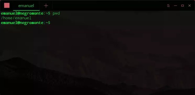 Veja um exemplo de uso do comando pwd: