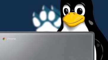 aplicativos-linux-nao-estao-funcionando-em-todos-os-chromebooks