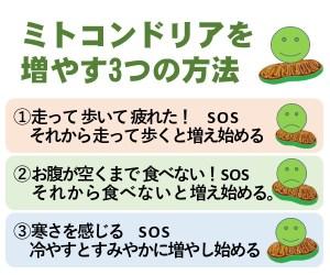 ミトコンドリアを増やす3つの方法、エネルギー不足と寒さ