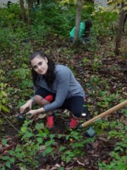 Antioch student, Sarah Goldstein, installs native plants in a restoration area in Glen Helen. Photo by Linda Fuselier.