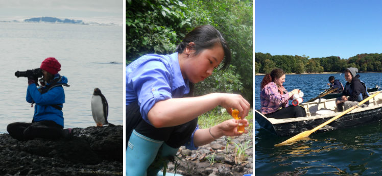 Penguins in Antarctica, Titrations in Costa Rica, and Phytoplankton in Boston: Fieldwork Photo Contest Winners