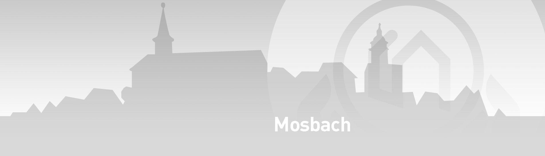 Mosbach SENCURINA slider - Besondere Leistungen Mosbach
