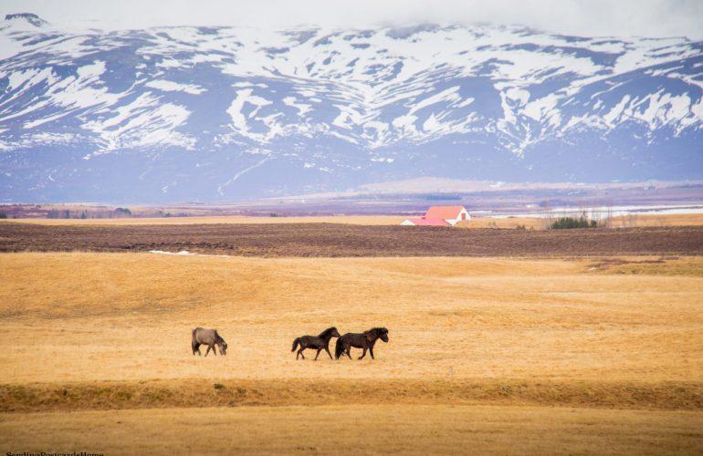 18 Breathtaking Photos of Raw Iceland