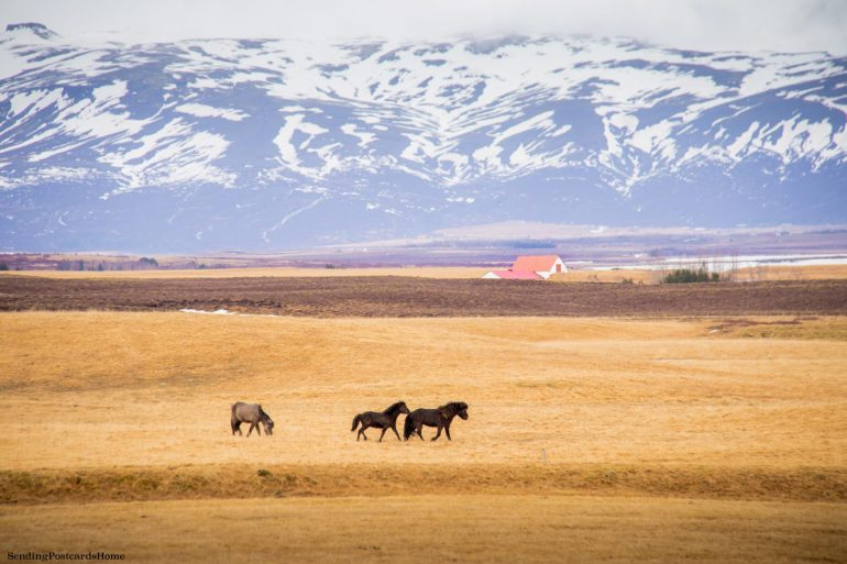 18 Breathtaking Photos of Raw Iceland 2