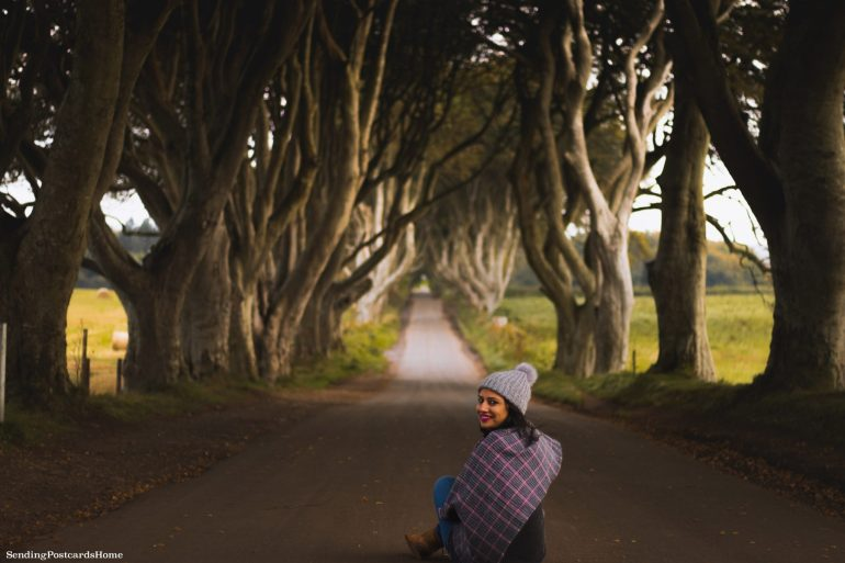The Drive to Giants Causeway and Beyond; The kings road aka Dark Hedges 2