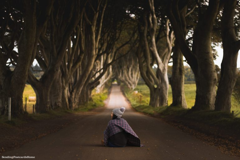 The Drive to Giants Causeway and Beyond; The kings road aka Dark Hedges 3