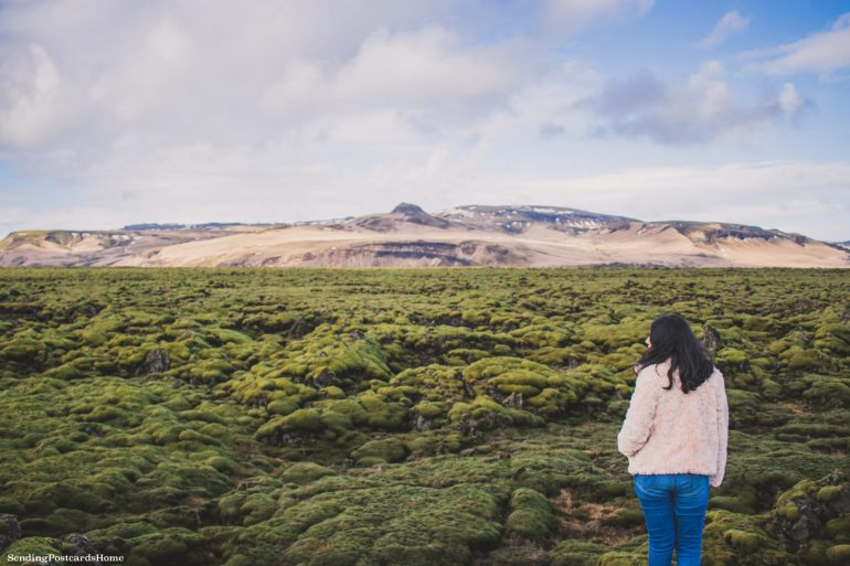 Itinerary for winter / spring road trip in Iceland - Scenic Green Lava Walk