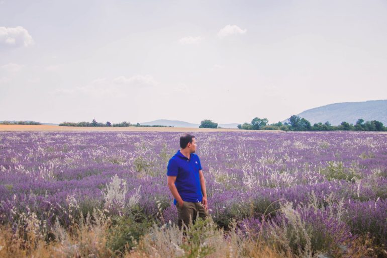 Provence and it's majestic Lavender fields _ 11