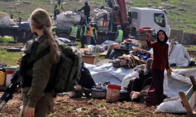 Planter, détruire, replanter: guerre d'usure entre Israéliens et bédouins dans le Jourdain