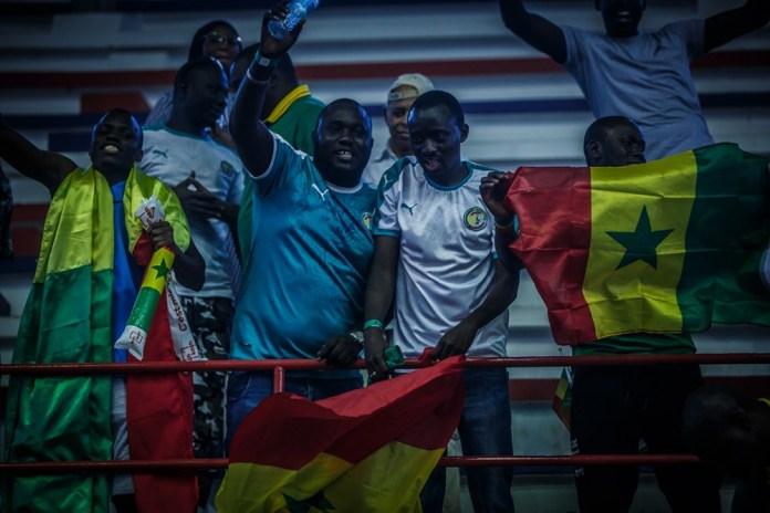 lionnes 4 - Préliminaire TQO: Le Sénégal bat le Mali et se qualifie en 1/2 finale