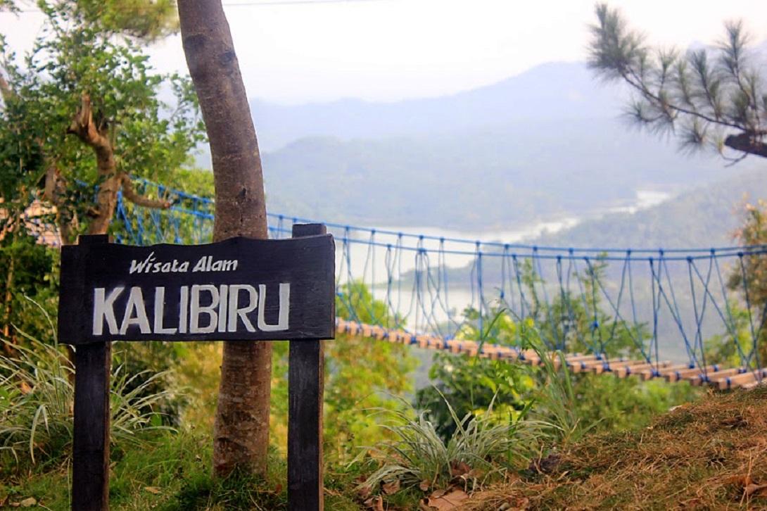 Desa Wisata Kalibiru Jogja