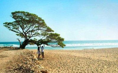 Pantai Pok Tunggal Yogyakarta