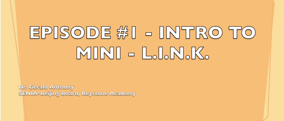 Mini L.I.N.K