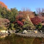 足立区【桜花亭】花畑記念公園は小さく美しく苗木も買えるひそかな穴場