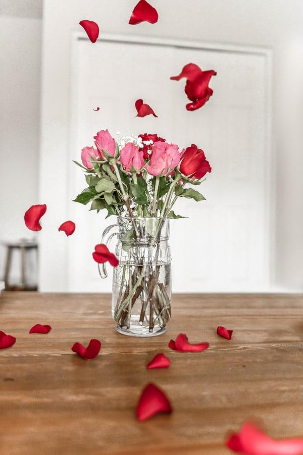 Valentine's Day for Seniors