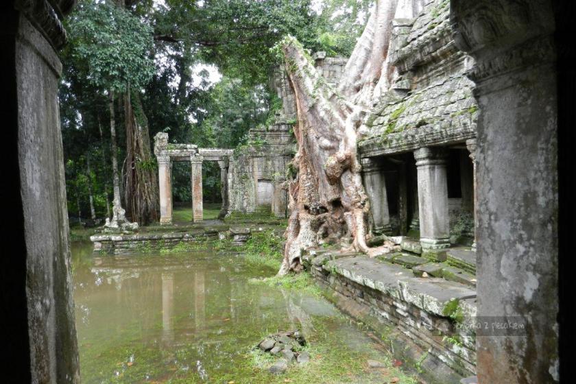 Preah Khan w kompleksie Angkor