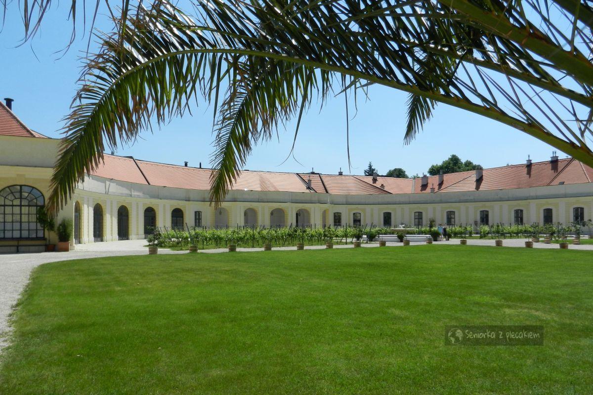 Wycieczka do Wiednia – Schonbrunn
