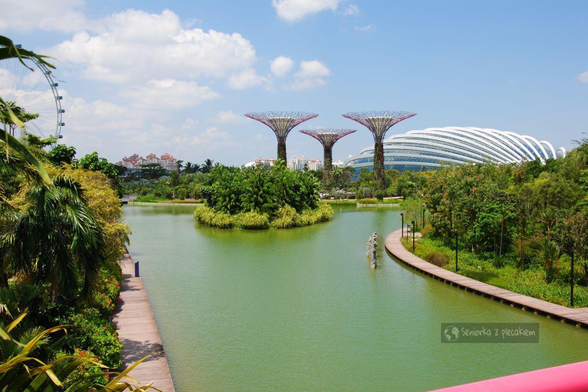 Takie rzeczy tylko w Singapurze - Ogrody przy Zatoce