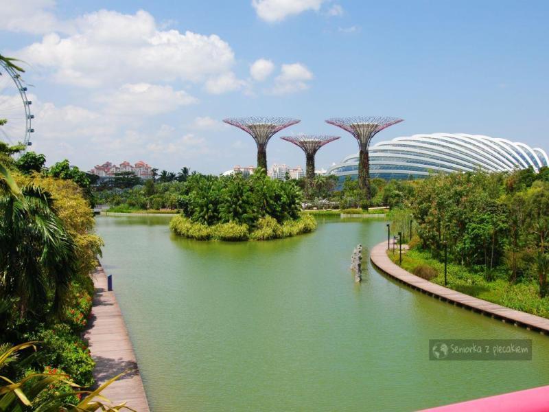 Takie rzeczy tylko w Singapurze – Ogrody przy Zatoce