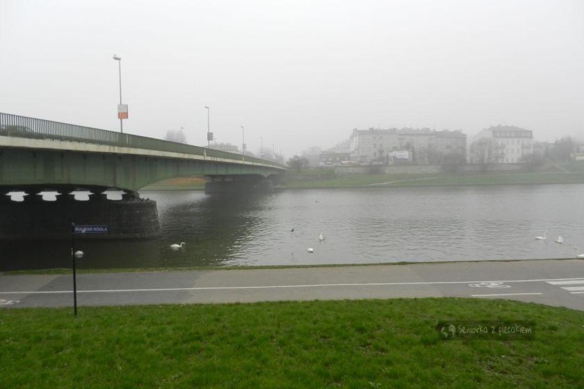 Rzeka Wisła we mgle