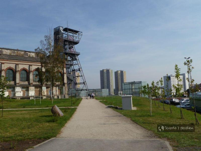 Muzeum Śląskie z 3-latkiem