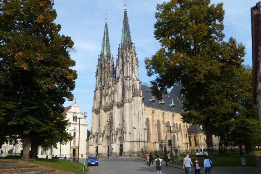 Katedra św. Wacława