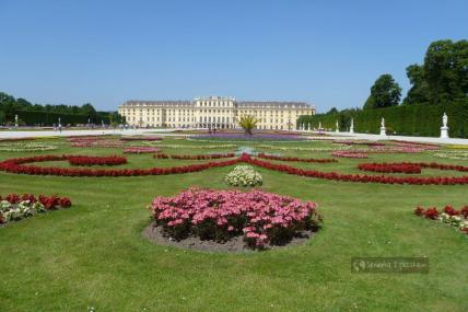 Wiedeń - Schonbrunn