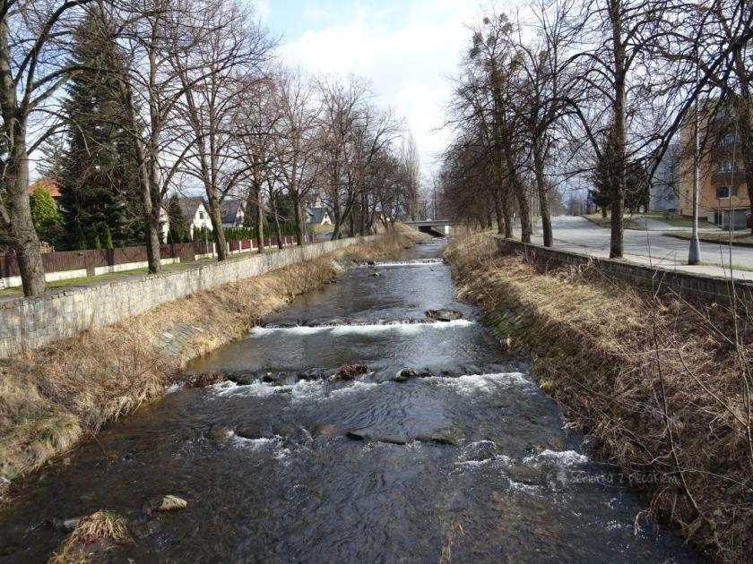 Rzeka Lomna