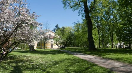 Spacer po zamkowym parku w Łańcucie
