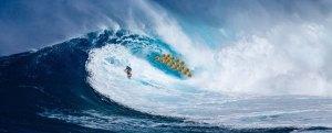 Bitcoin for Hawaii Wave