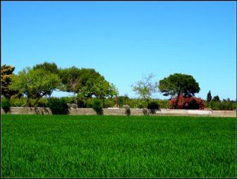 Albufeira Valence