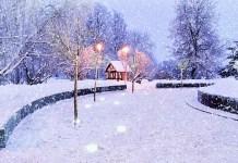 winter readiness