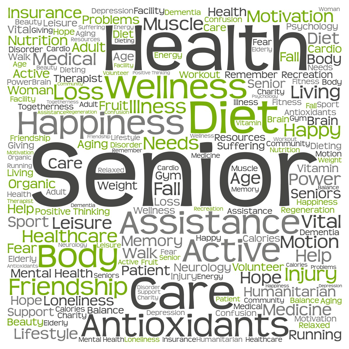 Seniors Top Health Concerns