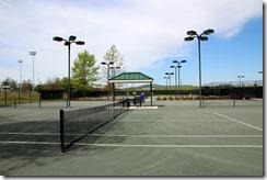 Sunny Courts Saturday